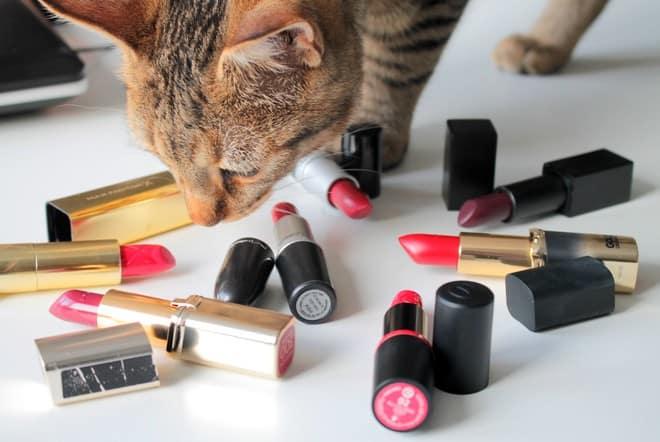 rode lipstick
