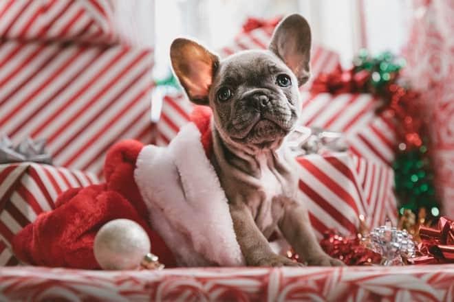 gourmetten kerst